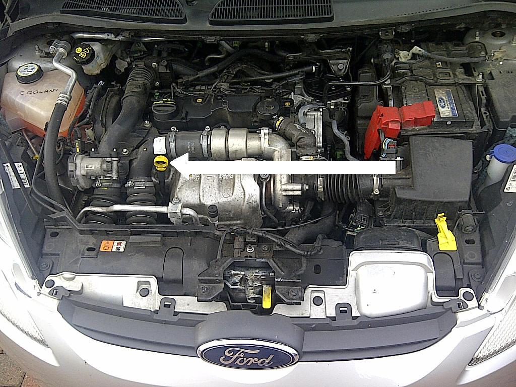 2006 ford focus first oil change for 2006 honda civic motor oil
